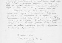 2. A faddi római katolikus plébános jelentése